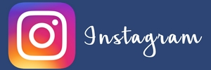 Instagram Large Buttons for Blog